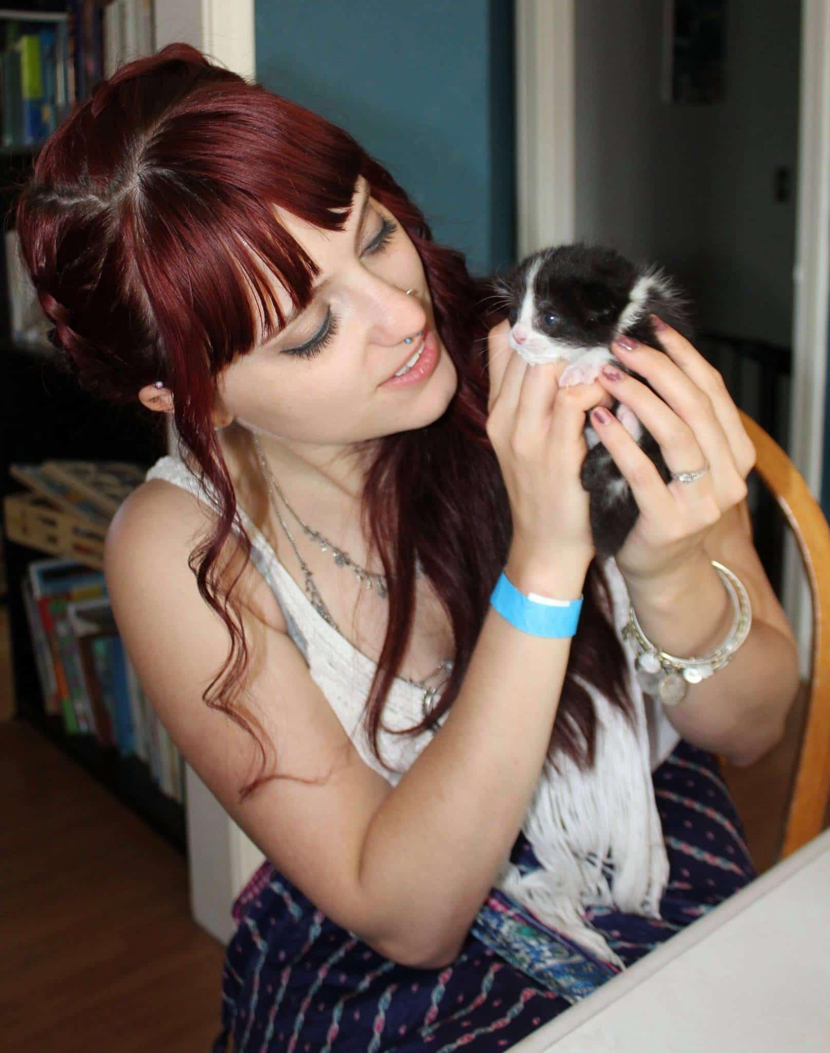 OKC Foster kitten Jenni Jenkins